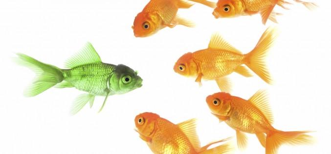 4 xu hướng xây dựng thương hiệu cá nhân