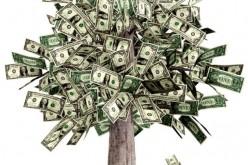 5 cách kiếm tiền siêu độc từ cơ thể