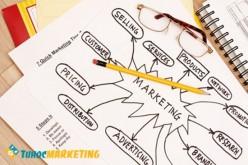 Chiến lược marketing cho startup: Giai đoạn bắt đầu khởi nghiệp