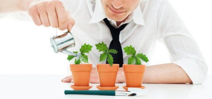 Những mô hình kinh doanh có thể khởi nghiệp với 15 triệu đồng